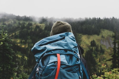 Wehearttravel-Inpakken-Tips-Backpack